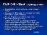 dmp dm ii strukturprogramm1