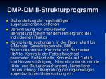 dmp dm ii strukturprogramm2
