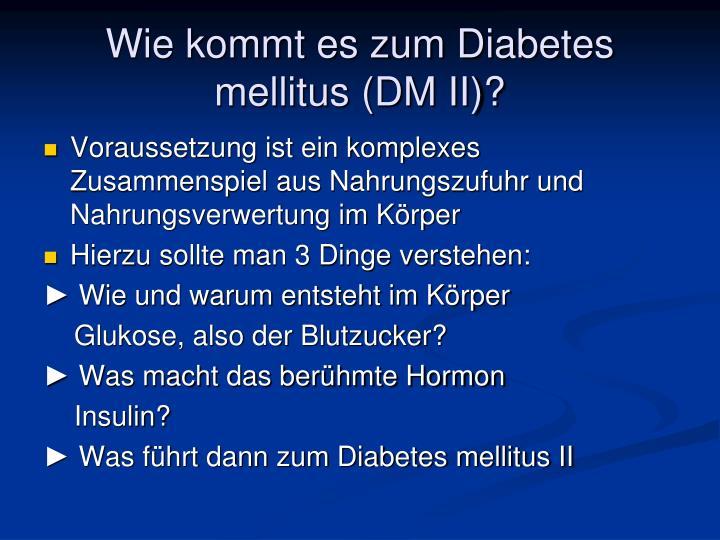 Wie kommt es zum Diabetes mellitus (DM II)?