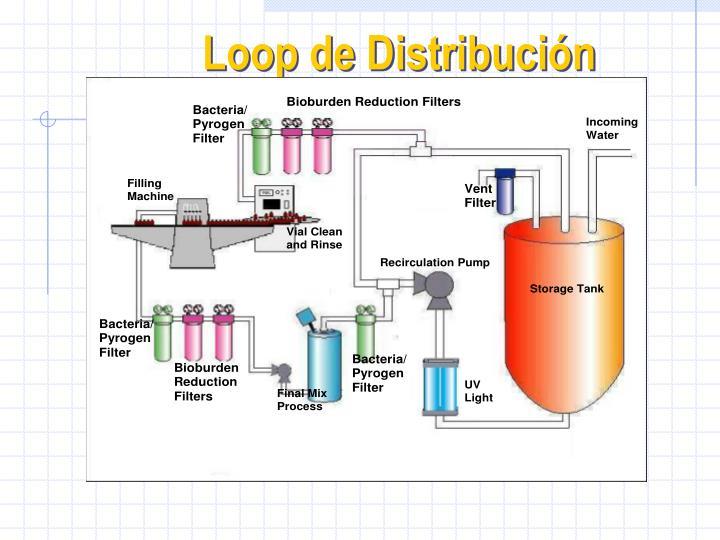 Loop de Distribución