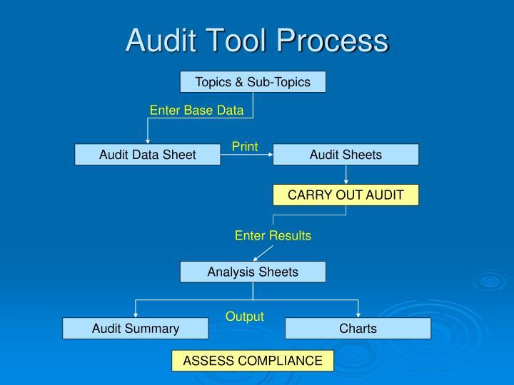 Audit Tool Process