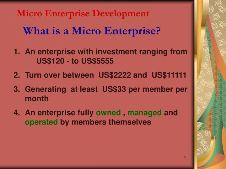 Micro Enterprise Development