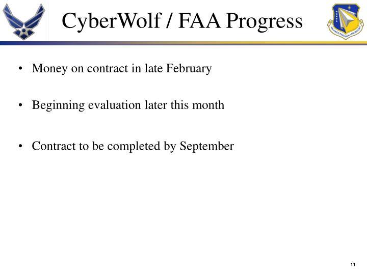 CyberWolf / FAA Progress