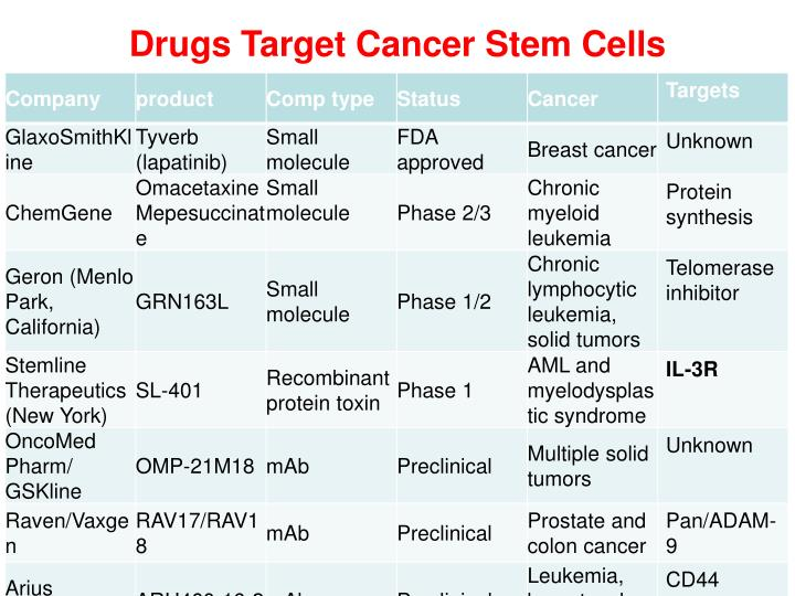 Drugs Target Cancer Stem Cells
