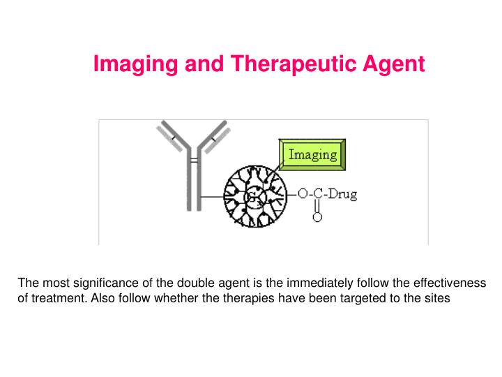 Imaging and Therapeutic Agent