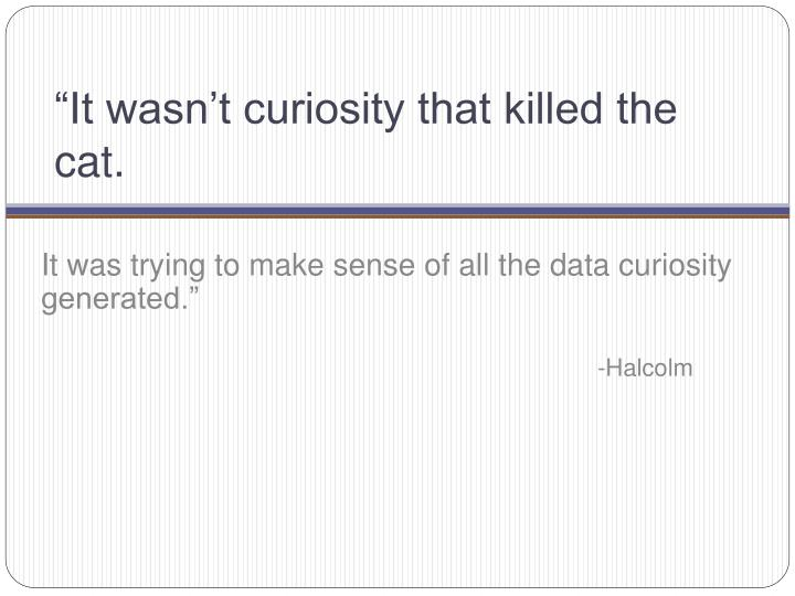"""It wasn't curiosity that killed the cat."
