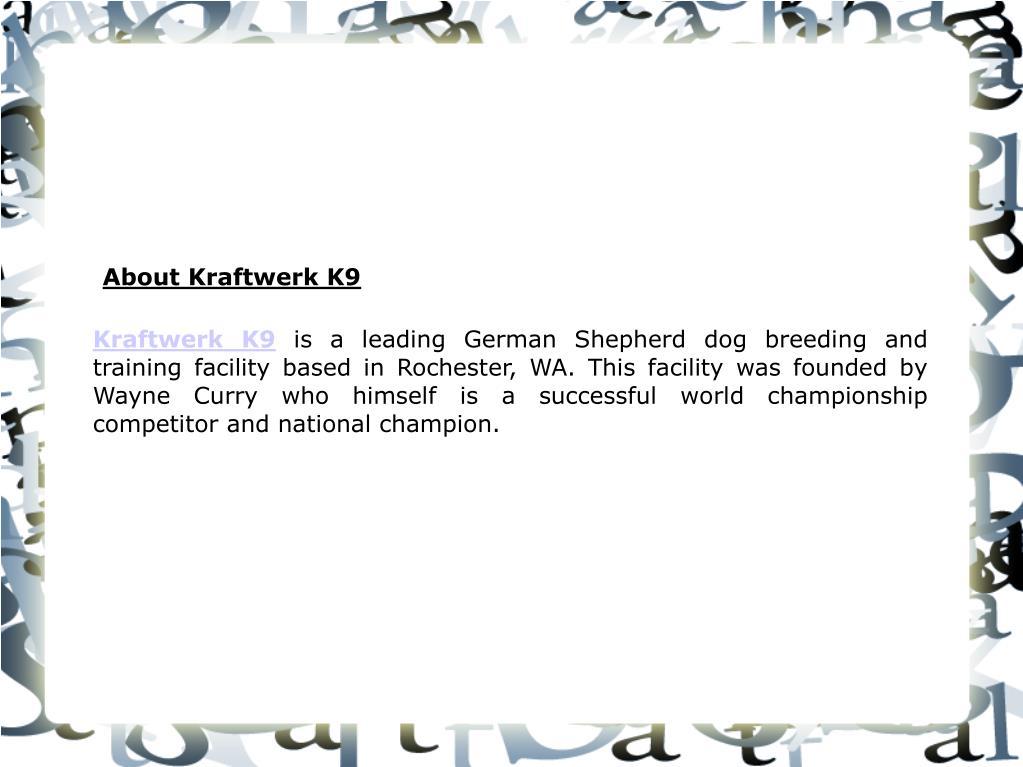 Kraftwerk K9