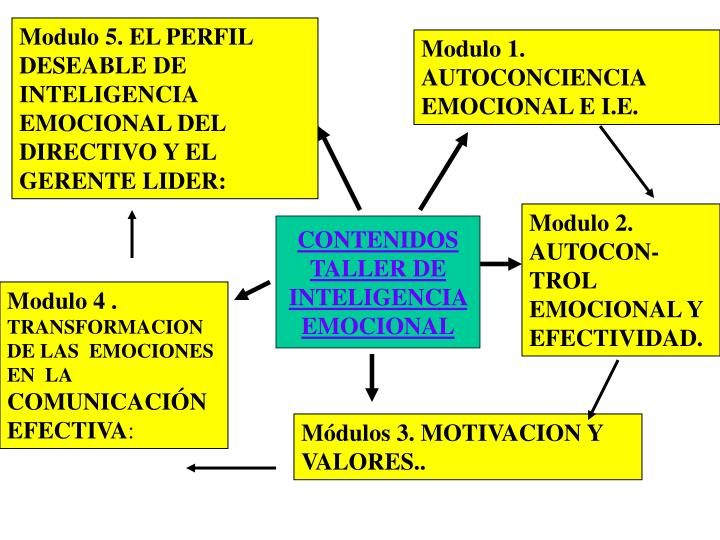 Modulo 5. EL PERFIL DESEABLE DE INTELIGENCIA EMOCIONAL DEL DIRECTIVO Y EL GERENTE LIDER: