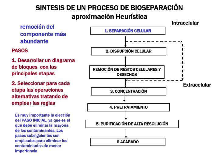SINTESIS DE UN PROCESO DE BIOSEPARACIN