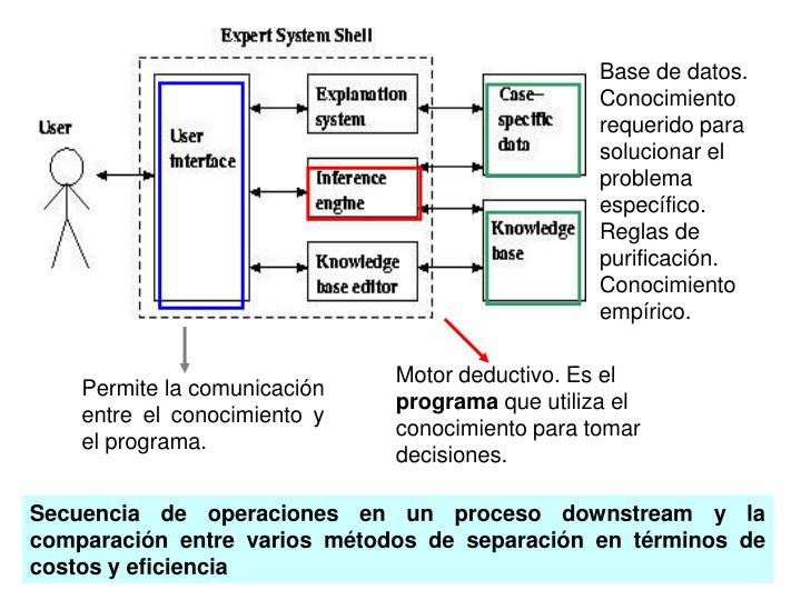 Base de datos. Conocimiento requerido para solucionar el problema especfico. Reglas de purificacin. Conocimiento emprico.