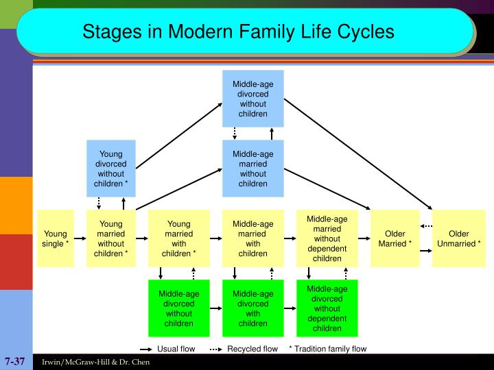 Stages in Modern Family Life Cycles
