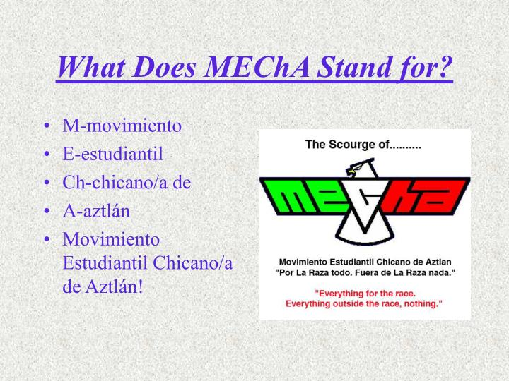What Does MEChA Stand for?