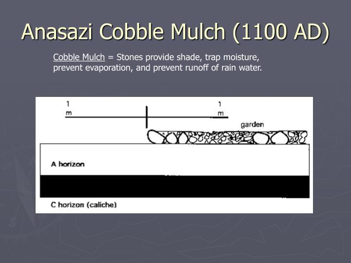 Anasazi Cobble Mulch (1100 AD)