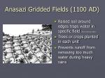 anasazi gridded fields 1100 ad