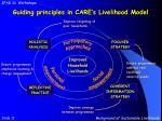 guiding principles in care s livelihood model