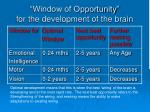 window of opportunity for the development of the brain