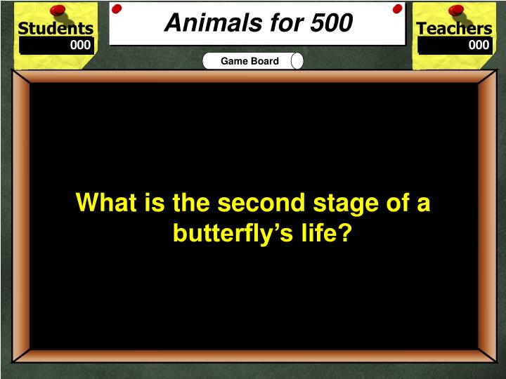 Animals for 500
