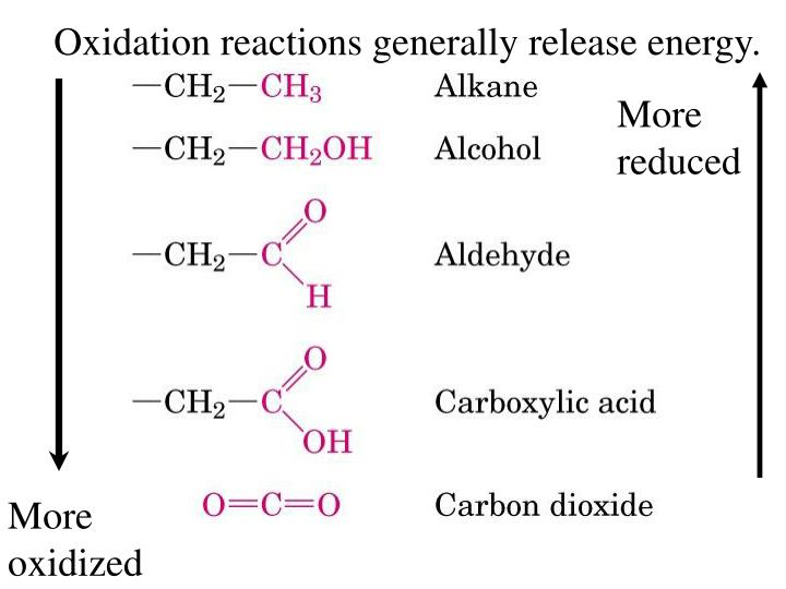 Oxidation reactions generally release energy.