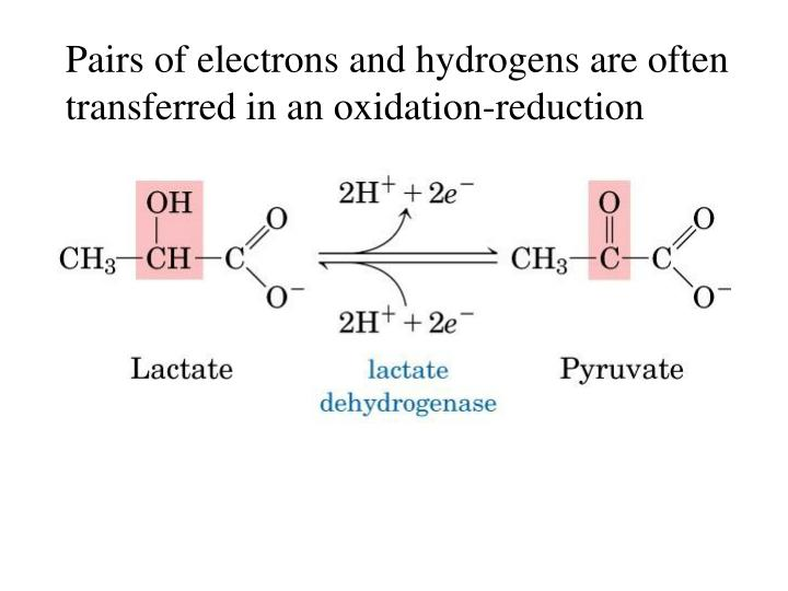 Pairs of electrons and hydrogens are often