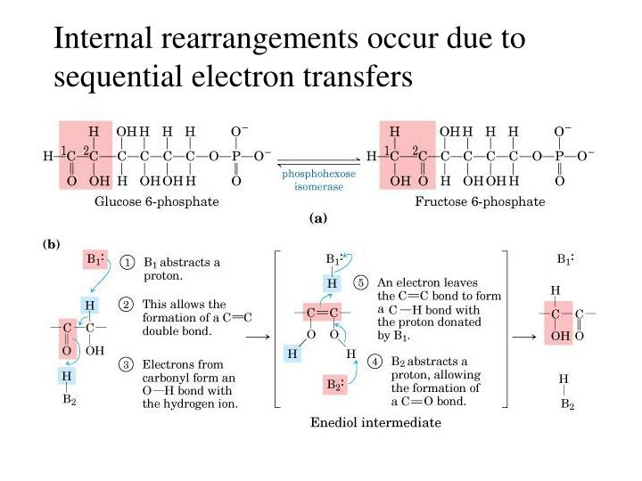 Internal rearrangements occur due to
