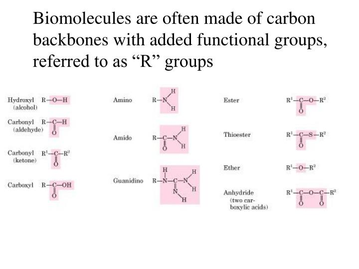 Biomolecules are often made of carbon