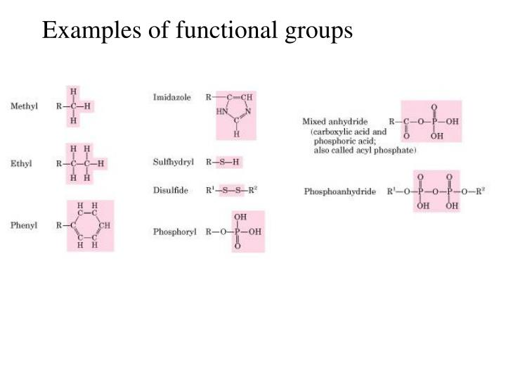 Examples of functional groups
