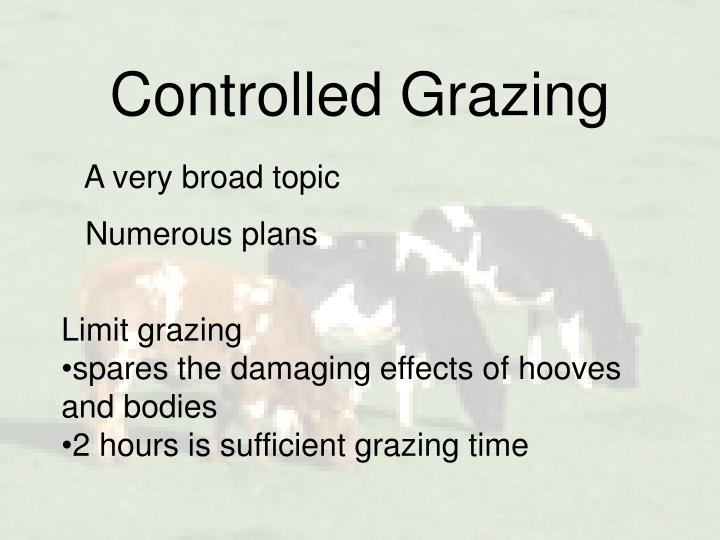 Controlled Grazing