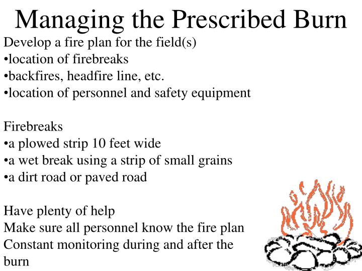Managing the Prescribed Burn
