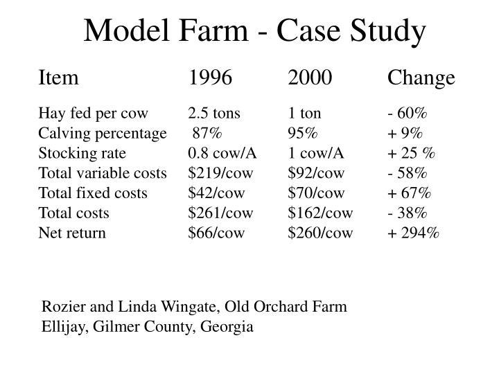 Model Farm - Case Study