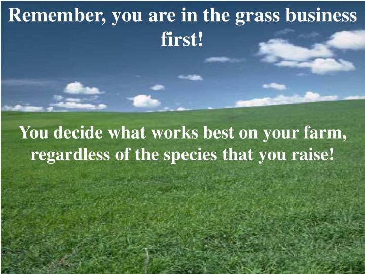 Remember, you are in the grass business first!