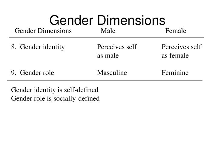Gender DimensionsMaleFemale