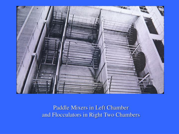 Paddle Mixers in Left Chamber