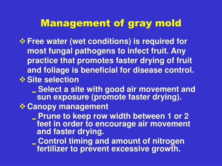 Management of gray mold