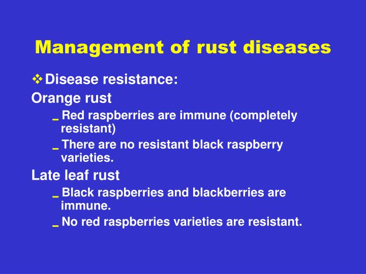 Management of rust diseases