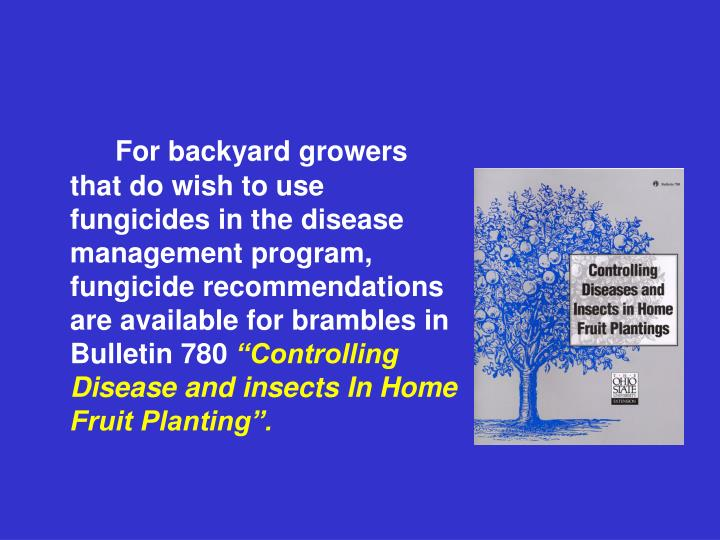 For backyard growers that do wish to use fungicides in the disease management program, fungicide recommendations are available for brambles in Bulletin 780