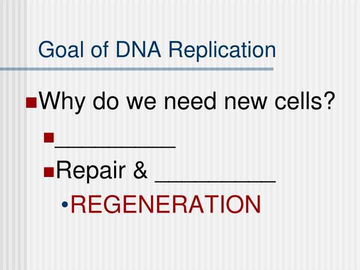 Goal of dna replication1