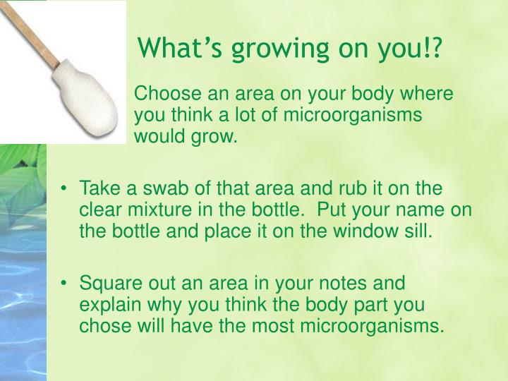 What's growing on you!?