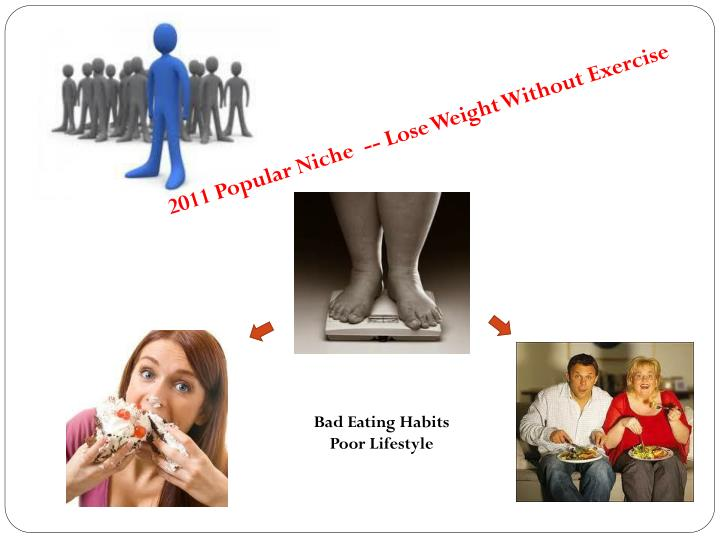 2011 Popular Niche  -- Lose Weight Without Exercise