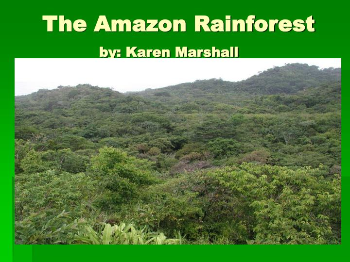 The amazon rainforest by karen marshall