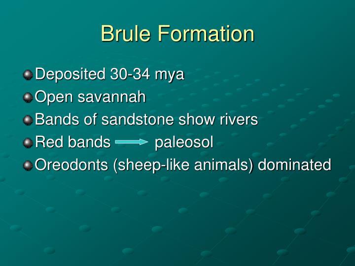 Brule Formation