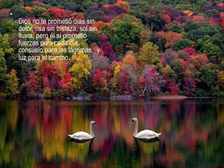 Dios no te prometió días sin dolor, risa sin tristeza, sol sin lluvia, pero él sí prometió fuerzas para cada día, consuelo para las lágrimas,  y luz para el camino