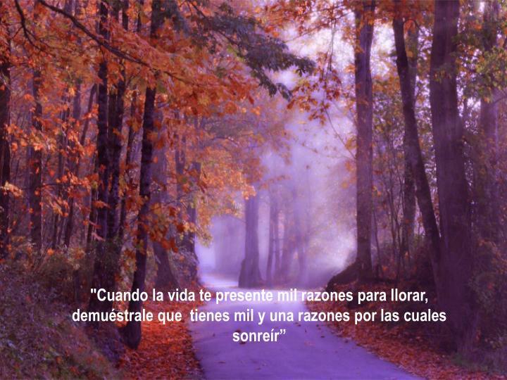 """""""Cuando la vida te presente mil razones para llorar, demuéstrale que  tienes mil y una razones por las cuales sonreír"""""""