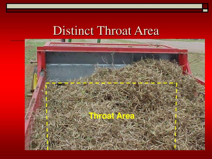 Distinct Throat Area