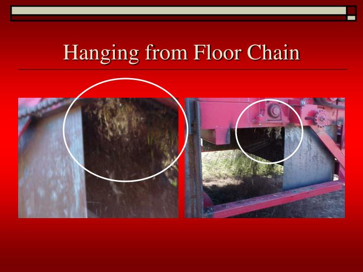 Hanging from Floor Chain
