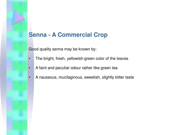 Senna - A Commercial Crop