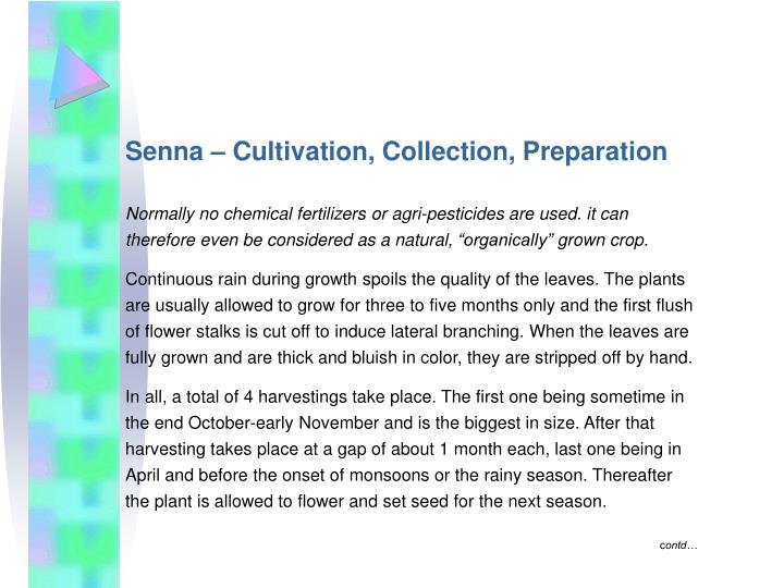 Senna – Cultivation, Collection, Preparation