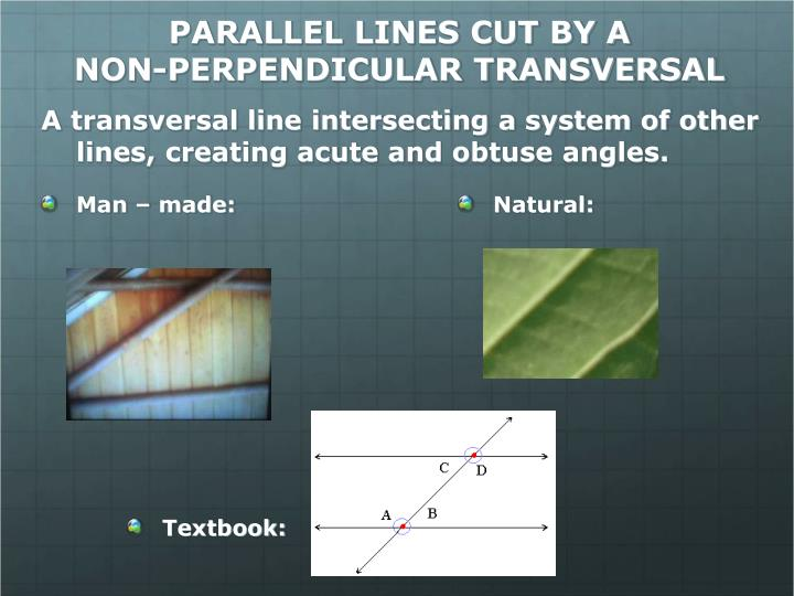 PARALLEL LINES CUT BY A