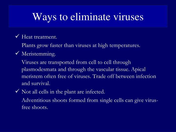 Ways to eliminate viruses