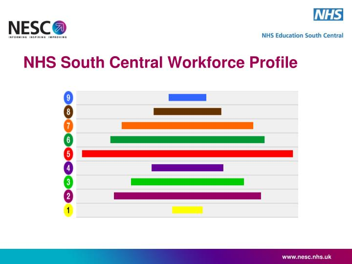 Nhs south central workforce profile