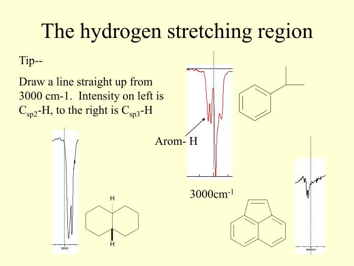 The hydrogen stretching region